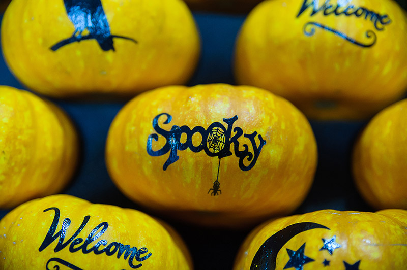 Pumpikin with spooky written on it